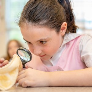 Lower School student investigates through a magnifying glass during science class.