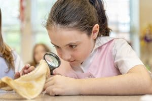 Developing a Global Sense of Curiosity at Oak Knoll