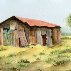 Katrina Bergen - watercolor